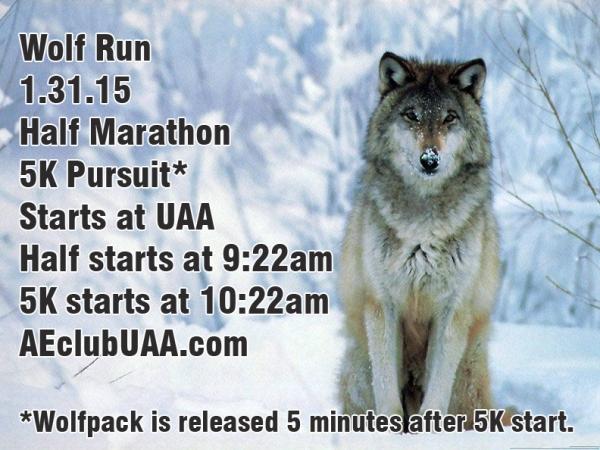 Wolf run 1.31.15